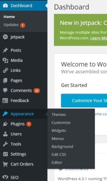 In Dashboard click APPEARANCE & than click WIDGETS